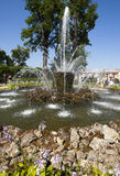 Gerbe de fontaine dans Pertergof, St Petersburg, Russie Photographie stock libre de droits