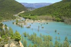 gerbeflod Arkivbild