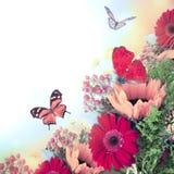 从gerber和蝴蝶的花束 免版税图库摄影