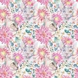 Gerber, хризантема, египетский кот, сфинкс вал яблока зацветая Картина акварели безшовная Стоковые Изображения