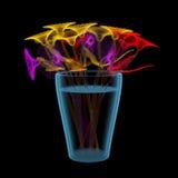 Gerber blommar i en hink (mångfärgade och blåa genomskinliga för röntgenstråle 3D) Royaltyfria Foton