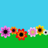 Gerber Daisy. Illustration of Gerber flowers daisy in a blue sky Stock Images