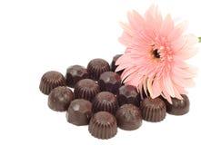Gerber et chocolat Image libre de droits