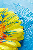 Gerber flower with paint Royalty Free Stock Image