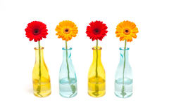 Gerber vase Royalty Free Stock Photography