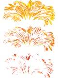 Gerber. Vector illustration. Beautiful flower design Royalty Free Stock Photography