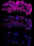 Gerber. Vector illustration. Beautiful flower design Stock Photos