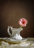 gerbera λουλουδιών ενιαίο Στοκ φωτογραφίες με δικαίωμα ελεύθερης χρήσης
