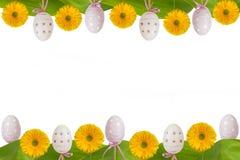 Gerbera и яичка желтого цвета рамки пасхи Стоковая Фотография RF