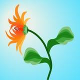Gerbera arancio del fiore sul fondo del cielo blu illustrazione vettoriale