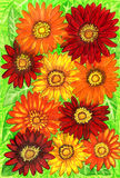 Gerbera. Background from gerbera flowers of red, orange and yellow colours on green leaves, hand painted picture, watercolours. Size of original 29,5 x 20,5 sm Stock Images
