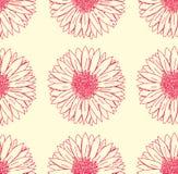 Gerbera bloemenpatroon Royalty-vrije Stock Afbeeldingen