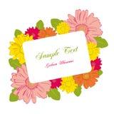 Gerbera blossoms frame Stock Image