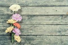 Gerbera-Blumen auf hölzernem Hintergrund Stockfoto
