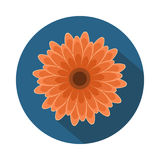 Gerbera-Blumen-flache Ikone mit Schatten Lizenzfreie Stockfotografie