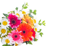Gerbera and camomile flowers in bouquet Royalty Free Stock Photography