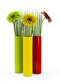 Gerbera in Color vases Royalty Free Stock Images