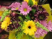 Gerbera colorido atrativo brilhante bonito Daisy Flowers Bouquet imagem de stock royalty free