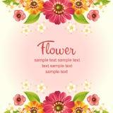 Gerbera daisy card Royalty Free Stock Photography