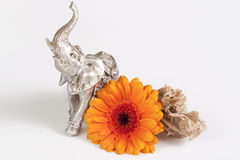 Gerbera daisy, desert rose and elephant figure Stock Photo