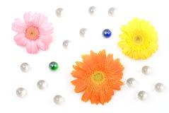 Free Gerbera Daisy Flower Arrangements Royalty Free Stock Images - 22927129