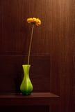 Gerbera dans le vase au fond à la maison brun Photographie stock libre de droits