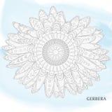 Gerbera, dekoracyjny Obrazy Royalty Free