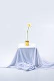 Gerbera fleurissant sur la table Image stock