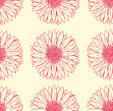 Gerbera floral pattern Royalty Free Stock Images