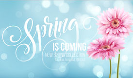 Gerbera Flower Background and Spring Lettering. Vector Illustration Stock Images