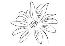 Gerbera flower black and white isolated vector illustration Royalty Free Stock Photos