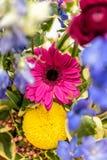 Gerbera flower bouquet stock photos