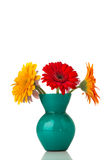 Gerbera. stock photography