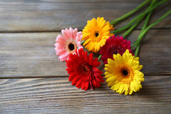 Gerbera flowers on the boards Stock Photography