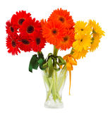 Gerbera flowers bouquets in vase Royalty Free Stock Photo
