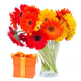 Gerbera flowers in glass vase with gift Royalty Free Stock Images