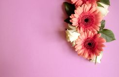 Gerbera flowers and roses royalty free stock photo