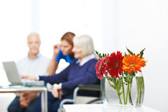 Gerbera flowers with senior people in background. Gerbera flowers in vase with senior people using computer in the background Royalty Free Stock Image