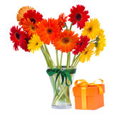 Gerbera flowers in vase with gift box Royalty Free Stock Image