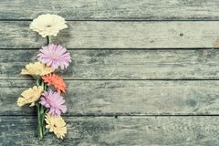 Gerbera Flowers on Wooden Background Stock Photo