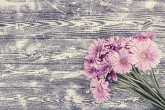 Gerbera Flowers on Wooden Background Royalty Free Stock Photo