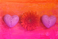 Gerbera and hearts Royalty Free Stock Photography