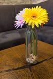 Gerbera i en glass vas på ett lantligt träkvarter royaltyfria foton