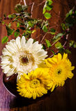 Gerbera ikebana Royalty Free Stock Photography