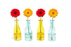 Gerbera im Vase Lizenzfreie Stockfotografie