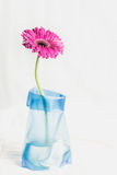 Gerbera jamesonii single pink flower in blue vase Royalty Free Stock Photo