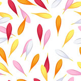 Gerbera petals seamless pattern. Royalty Free Stock Photography