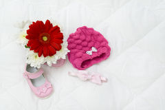 Gerbera pink and baby shoes Stock Image