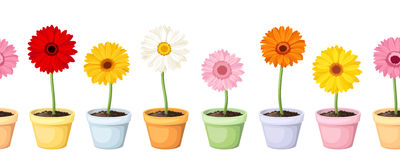Gerbera in pots. Horizontal seamless background. Vector horizontal seamless background with colorful gerbera flowers in flowerpots Stock Image