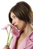 Gerbera rosado que huele Fotografía de archivo